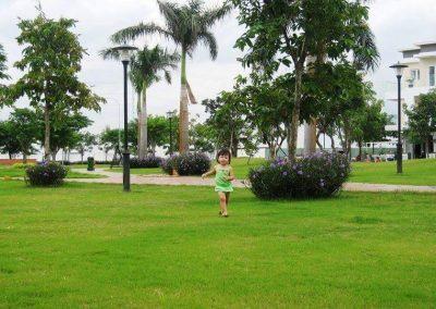 cv-du-an-melosa-garden